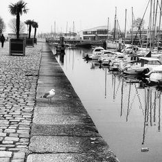 Lorient.