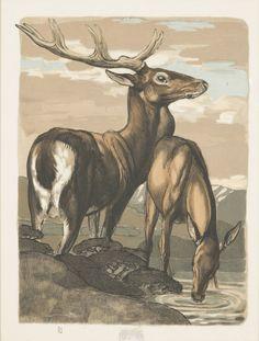 Lot : Paul JOUVE , d'après - «Cerf et biche» | Dans la vente Tableaux et Arts Décoratifs du XXe siècle à Delvaux