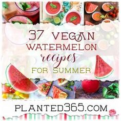 37 Vegan Watermelon Recipes for a delicious end of summer! Tasty, juicy, and healthy, everyone loves watermelon! Try these easy recipes! 🍉🍉🍉🍉🍉🍉🌞 Healthy Eating Recipes, Vegan Recipes Easy, Gluten Free Recipes, Delicious Recipes, Vegan Sweets, Vegan Desserts, Vegan Food, Food Food, Dessert Recipes