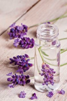 DIY Lavender Perfume - - - - Be sure to check out our fine mist amber glass…