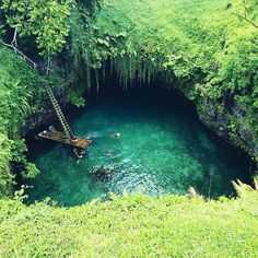To sua ocean trench was stunning #tosua #tosuaoceantrench #samoa #samoan #travelagent