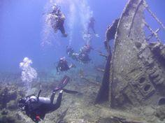 Check out the ship wreck at St. Thomas #diving