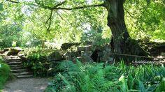 Stadtlustgarten: Englische Gärten - Hever Castle and Gardens / Kent