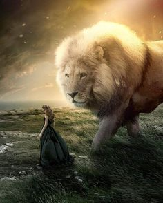 """""""Čuvao ... Jahve ..., ...dušu tvoju."""" Lion Images, Lion Pictures, Big Cats Art, Cat Art, Fantasy Magic, Fantasy Art, Lion Of Judah Jesus, Lion Photography, Giant Animals"""