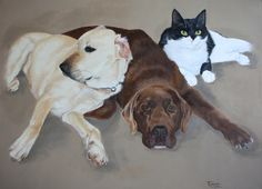"""'Bailey, Coco & Pickle'. Labradors and cat by Tania Robinson. Private commission 2012. Acrylic on canvas. 24""""x18""""."""
