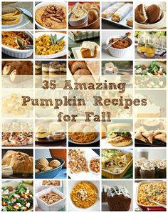 35 Pumpkin Recipes for Fall and Holidays!