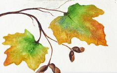 Autumn leaves watercolor, maple leaves painting, home wall decor, fall maple leaf painting