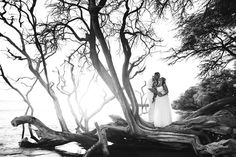 Elopement and Maternity Maui Shoot - Anna Kim Photography