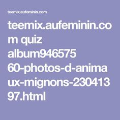 teemix.aufeminin.com quiz album946575 60-photos-d-animaux-mignons-23041397.html