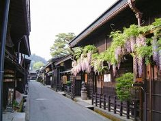 Takayama,Gifu