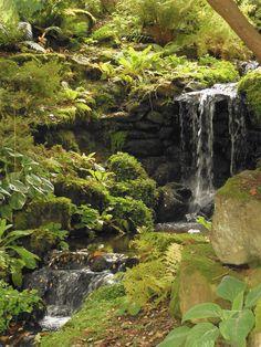 Autumn colours - Bodnant Garden, North Wales