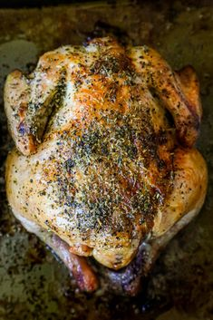 The Best Roasted Cornish Game Hens Recipe - Sweet Cs Designs Easter Roasted Cornish Hen, Cornish Game Hen, Entree Recipes, Healthy Dinner Recipes, Cooking Recipes, Supper Recipes, What's Cooking, Paleo Recipes, Cornish Hen Recipe Easy