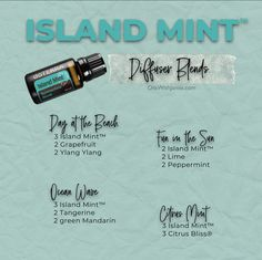 Essential Oils Guide, Essential Oil Scents, Essential Oil Diffuser Blends, Doterra Oil Diffuser, Doterra Essential Oils, Easential Oils, Doterra Blends, Beach Chairs, Essential Oils