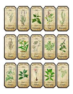Vintage inspired assorted herb spice food tea bottle jar labels stickers #Handmade #Vintage