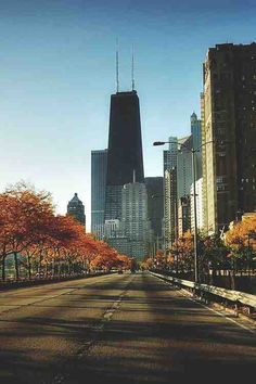 Fall time in chi town