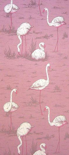 Pink Flamingo Wallpaper.