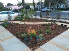 Southern Hemisphere Garden Design in Los Angeles.