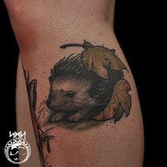 Cute little hedgehog tattoo scott m harrison