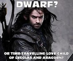 """LOL. This made me laugh so hard... It's funny too cuz throughout the entire movie, I kept thinking, """"he totally reminds me of both Legolas and Aragorn."""""""