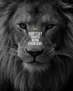 Quotes Discover 20 Motivational Quotes Brought To You By Big And Powerful Cats 20 Motivational Quotes Brought To You By Big And Powerful Cats - I Can Has Cheezburger? Top Quotes, Wisdom Quotes, Quotes To Live By, Life Quotes, Loyalty Quotes, Mindset Quotes, Positive Quotes, Motivational Quotes, Inspirational Quotes