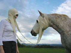 Just horsing around...