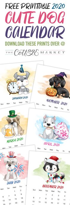 How about a Free Printable 2020 Cute Dog Calendar to get organized for the New Year! It has a happy style we know so many of you adore! Dog Calendar, Cute Calendar, Free Printable Calendar, Free Printables, Tree Shop, Free Digital Scrapbooking, Party Banners, Free Dogs, Scrapbook Paper