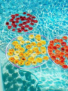 50 Must-Know Party Tips from the Pros - Rachael Ray Every Day, Pool Party Ideas,{ResimSayisi} 50th Party, Luau Party, Diy Party, Party Ideas, 60s Party Themes, Aloha Party, Farm Party, Party Summer, Summer Food