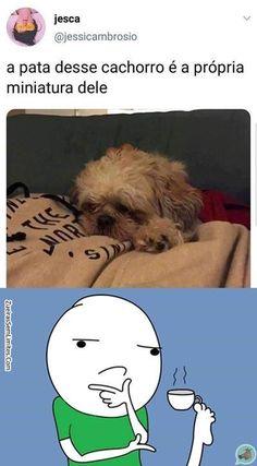 Top Memes, Best Memes, Funny Memes, Otaku Meme, Memes Status, Funny Comics, Funny Photos, Have Fun, Cute Animals