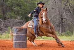 """""""Pressure Proof Your Riding"""" An article on how to ride and train with a positive mindset"""