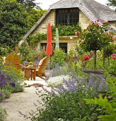 Garden grounds of The Gate House- Carmel's Mystery Cottage Small Plants, Small Flowers, Flora, Carmel By The Sea, Gate House, Outdoor Living, Outdoor Decor, Outdoor Spaces, Romantic Homes