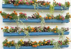 Guia de jardin: Ideas para pequeñas terrazas y balcones: plantar en canalones.