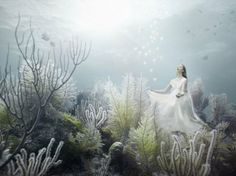 Spectacular exhibition in the Maldives Andreas Franke
