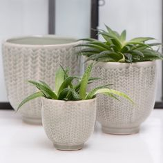 Pretty pots for your greenery inside and out.  These come in green and blue colours