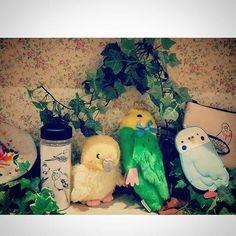 【perie_inage】さんのInstagramをピンしています。 《. プレミィコロミィでは、小鳥のパーティーが開催中だそうです🐣🐔🐦🐤. . . #ペリエ稲毛 #プレミィコロミィ #plamecollome #鳥 #とり #小鳥 #bird #parakeet #インコ #雑貨 #item #kawaii #cute #animals #animal #動物 #かわいい #森 #草 #forest #grass #ポーチ #pouch #dove #鳩 #ペリエ #motif #駅ビル #party #perie》