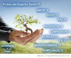 α JESUS NUESTRO SALVADOR Ω: La paz es fruto del Espíritu Santo