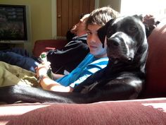 Because big dogs are chill as fuck. | 29 Reasons Big Dogs Are Infinitely Better Than Small Dogs