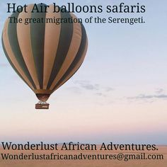 Instagram The Great Migration, Hot Air Balloon, Fun Facts, Safari, Random Stuff, Balloons, Adventure, Instagram, Random Things