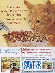 I don't have cats; I never have. It is one of the few animals I have not had as a pet. I did, however, watch out for my neighbor's cats, Whimsy and Shadow, once while they were on vacation. I fed them some sort of food akin to the ones featured in this ad, which made their own gravy.  Dog and cat foods used to all have this make-your-own gravy feature. You just added water and you got a gravy-ish infused hunk of something that smelled horrible and had the consistency of Sno-Drift School…