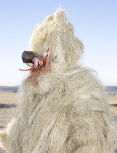 Charles Fréger - Portrait of a pagan Charles Freger, Animal Costumes, Fursuit, Archetypes, Pagan, Concept Art, Beast, Folk, Creatures