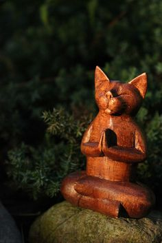 Buddha-Kitty-on-Rock | Flickr - Photo Sharing!