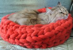 Cat Bed, Cat House, Chunky Cat Bed, Chunky Cat House, Chunky knitting, Cat furniture, Cat Cave, Bedding by JennysKnitCo on Etsy https://www.etsy.com/listing/235669718/cat-bed-cat-house-chunky-cat-bed-chunky