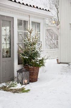 42 Stunning Outdoor Christmas Decoration Ideas - Page 9 of 44 Cottage Christmas, Christmas Porch, Farmhouse Christmas Decor, Christmas Mood, Merry Christmas, Christmas Lawn Decorations, Christmas Planters, Outdoor Decorations, Minimalist Christmas