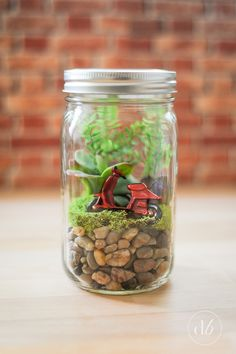 Mason jar terrarium.          Gloucestershire Resource Centre http://www.grcltd.org/home-resource-centre/