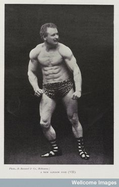 sandow the magnificent Sandow the magnificent is the story of this first showman to emphasize physique  display  sandow was a proponent of exercise to alleviate physical ailments,.