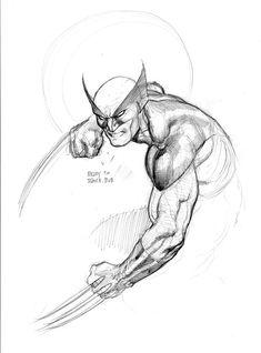 Wolverine - Frank Cho