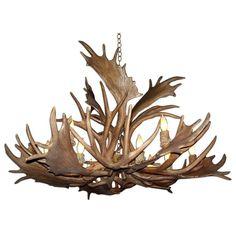 Deer Antler Chandelier, Rustic Chandelier, Rustic Lamps, Chandelier Shades, Chandelier Lighting, Chandeliers, Antler Lights, Rustic Lighting, Rustic Decor