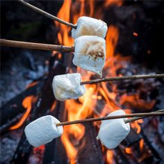 Crafters Choice™ Campfire Marshmallow Fragrance Oil 995 - Wholesale Supplies Plus camping Autumn Aesthetic, Summer Aesthetic, Camping Aesthetic, Campfire Marshmallows, Toasted Marshmallow, Summer Bucket Lists, Camping Life, Camping Cabins, Camping Games