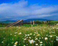Bridge At Castlegregory, Dingle Peninsula, County Kerry, Ireland