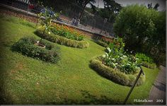 Orto Botanico dell'università di Ferrara foto2 - Botanical Garden of the University of Ferrara photo2