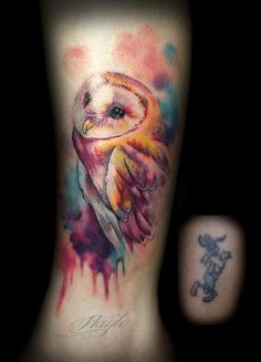 Haylo - Watercolor style owl cover up More